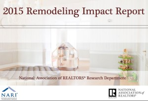 Remodeling Impact Study cover photo